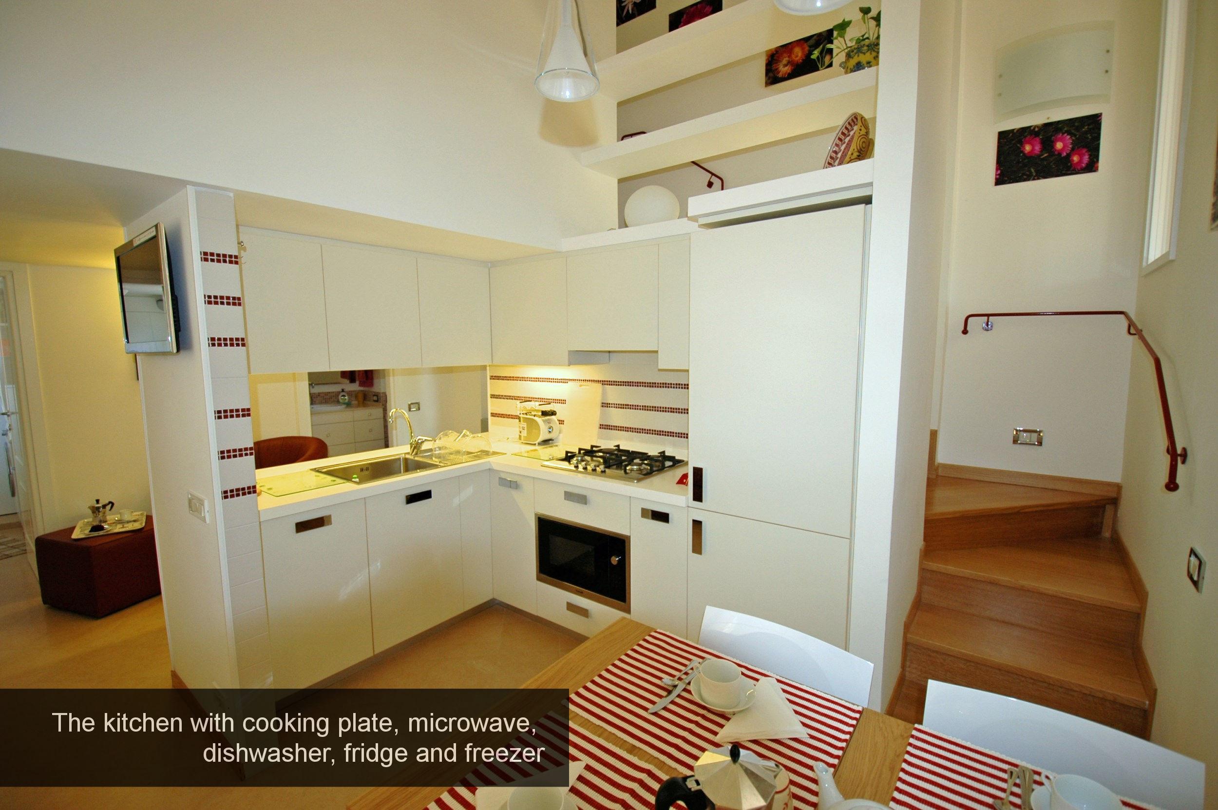 9) kitchen, cooking plate, microwave, dishwasher, fridge and freezer